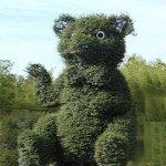 Buchsbaumfiguren