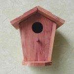 Vogelhäuser u. Wildlife
