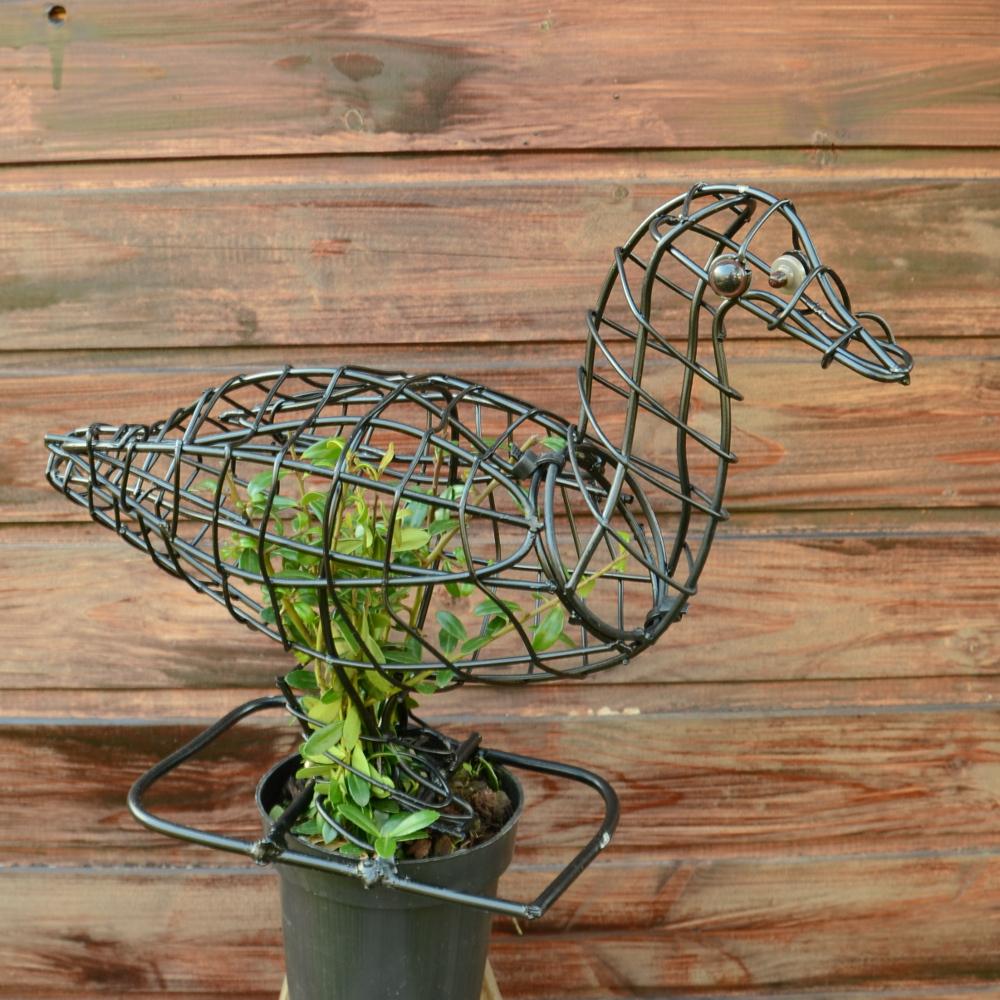 Buchsbaumfigur Ente mit Ilex bepflanzt