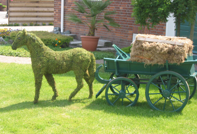 Pferd mit Moos